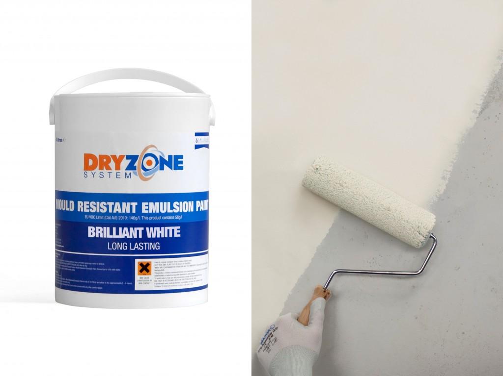 Safeguard Dryzone Mould Resistant Paint