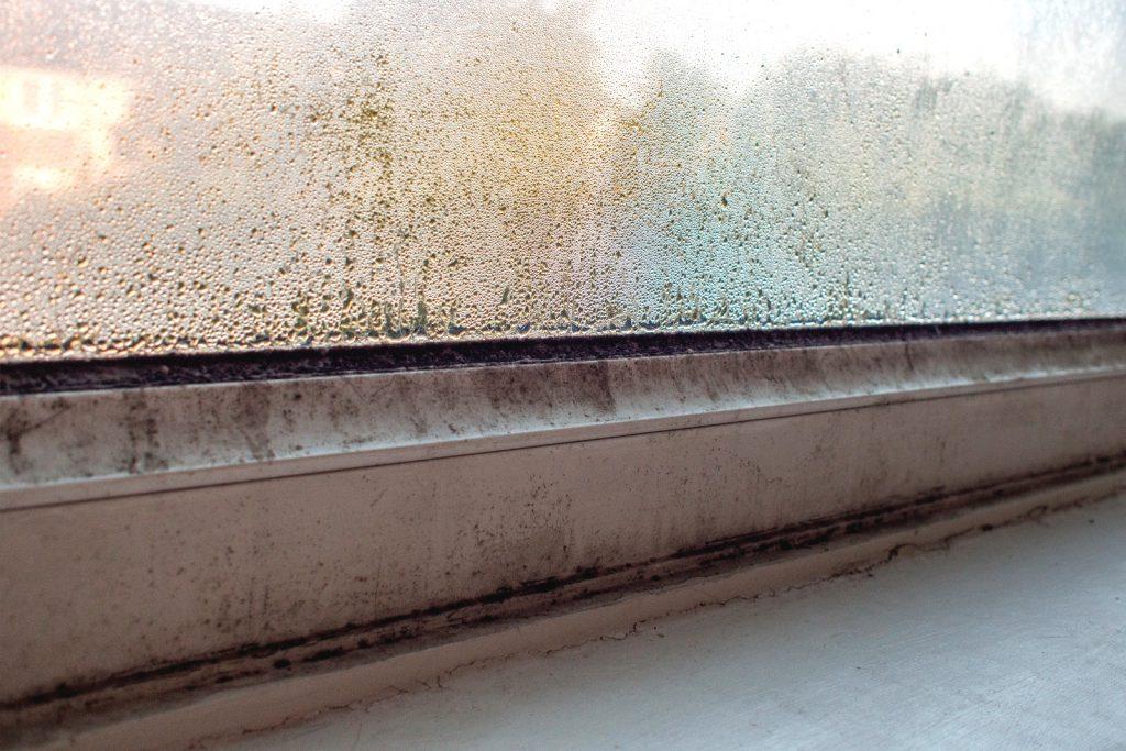 safeguard-yougov-damp-survey-september-2016-condensation