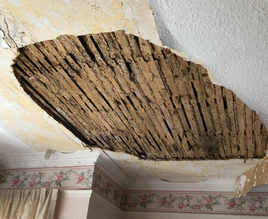 Failed lath and plaster ceiling